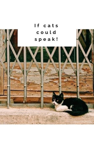 If cats could speak!