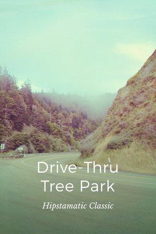 Drive-Thru Tree Park Hipstamatic Classic