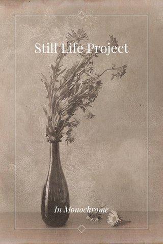 Still Life Project In Monochrome