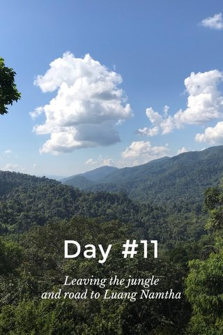 Day #11 Leaving the jungle and road to Luang Namtha