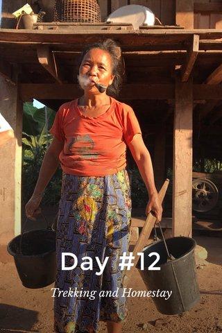 Day #12 Trekking and Homestay