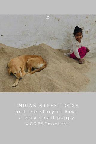 INDIAN STREET DOGS and the story of Kiwi- a very small puppy. #CRESTcontest