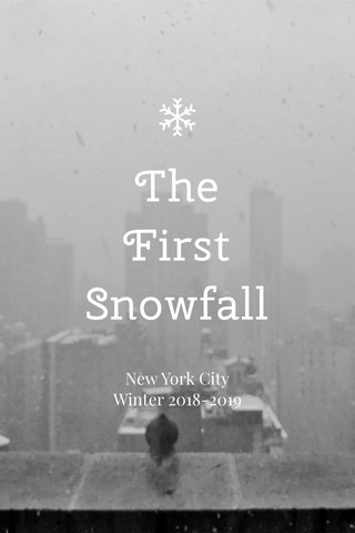 The First Snowfall New York City Winter 2018-2019