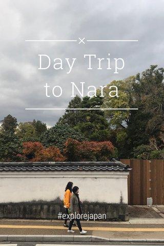 Day Trip to Nara #explorejapan
