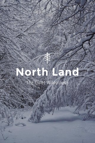 North Land The Quiet Wilderness