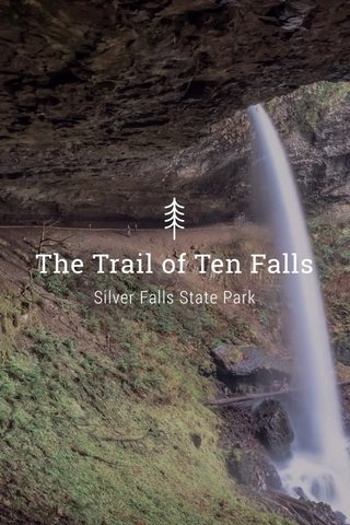 The Trail of Ten Falls Silver Falls State Park