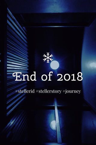 End of 2018 #stellerid #stellerstory #journey