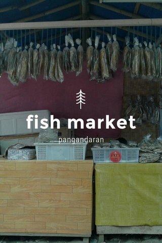 fish market pangandaran