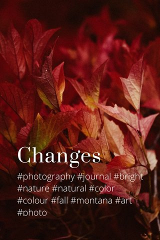 Changes #photography #journal #bright #nature #natural #color #colour #fall #montana #art #photo