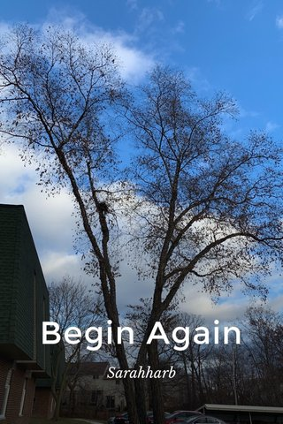 Begin Again Sarahharb