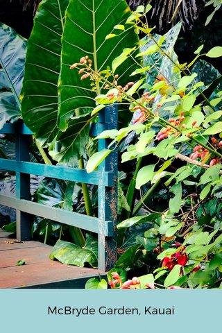McBryde Garden, Kauai
