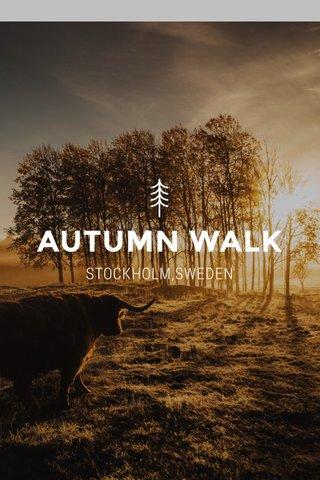 AUTUMN WALK STOCKHOLM,SWEDEN