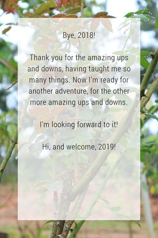 Bye, 2018! Thank you for the amazing ups and downs, having taught me so many things. Now I'm ready for another adventure, for the other more amazing ups and downs. I'm looking forward to it! Hi, and welcome, 2019!