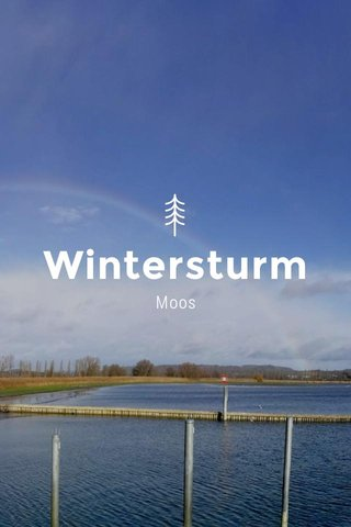 Wintersturm Moos