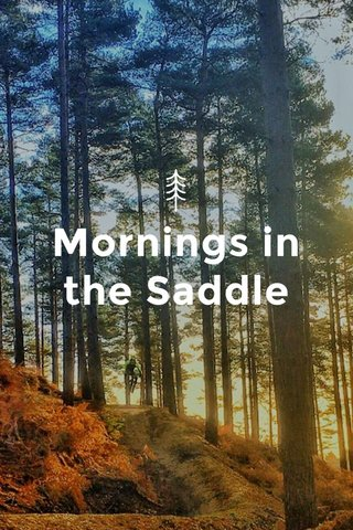 Mornings in the Saddle