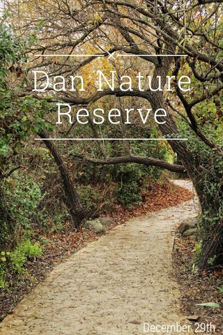 Dan Nature Reserve December 29th
