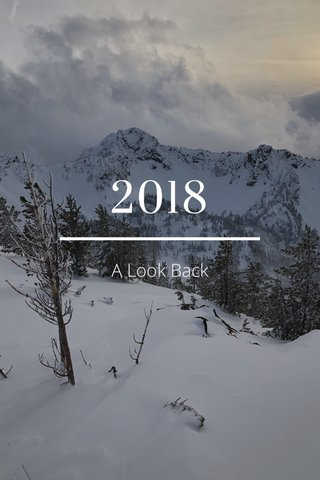 2018 A Look Back