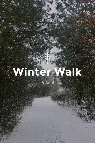 Winter Walk Poland