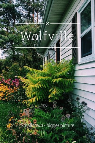 Wolfville Small town - bigger picture