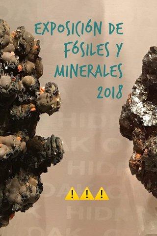 Exposición de Fósiles y Minerales 2018 ⚠️⚠️⚠️