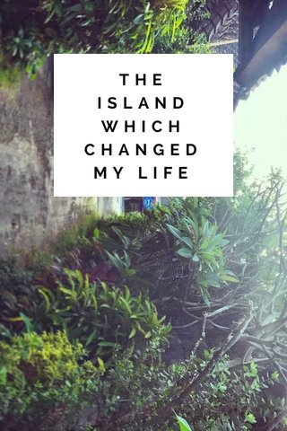 THE ISLAND WHICH CHANGED MY LIFE