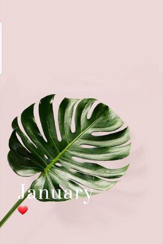 January ❤