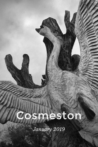 Cosmeston January 2019