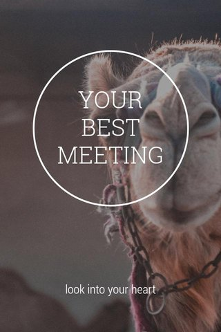 YOUR BEST MEETING look into your heart