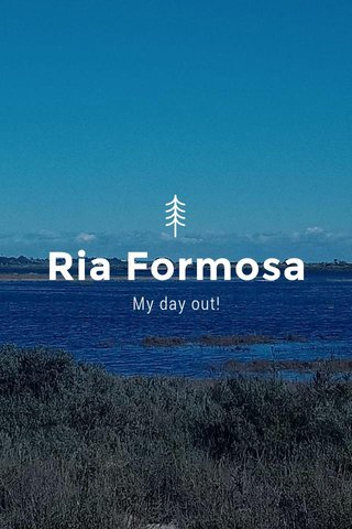 Ria Formosa My day out!