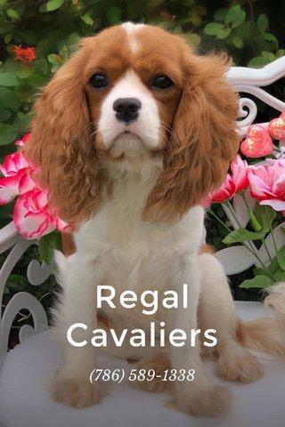 Regal Cavaliers (786) 589-1338