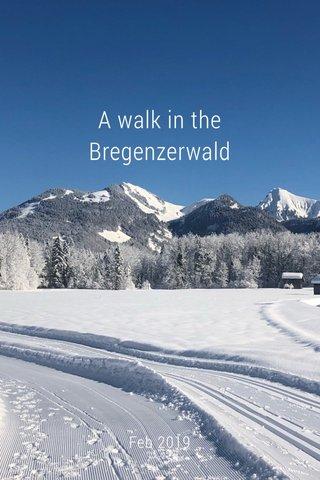 A walk in the Bregenzerwald Feb 2019