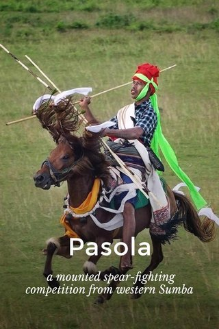Pasola a mounted spear-fighting competition from westernSumba