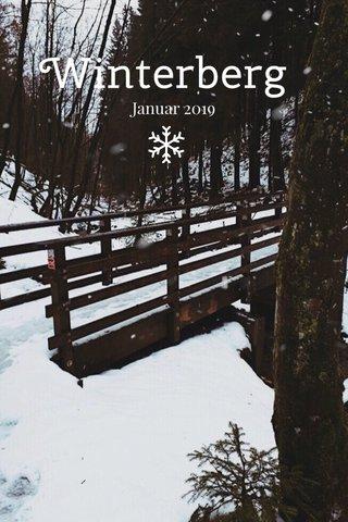Winterberg Januar 2019