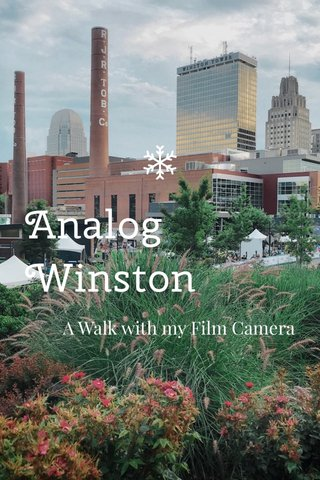 Analog Winston A Walk with my Film Camera