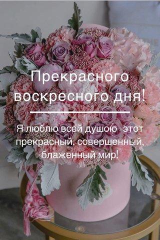 Прекрасного воскресного дня! Я люблю всей душою -этот прекрасный, совершенный, блаженный мир!