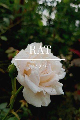 RAT  14.2.19 