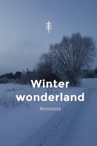 Winter wonderland Minnesota