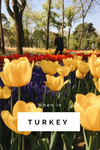 TURKEY When in