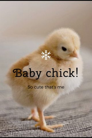 Baby chick! So cute that's me