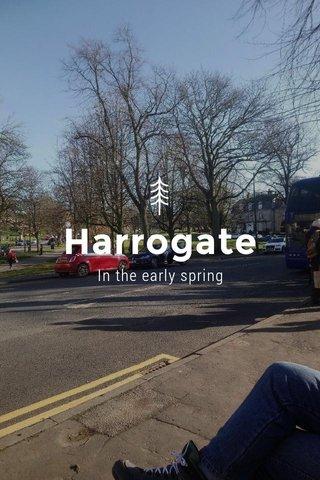 Harrogate In the early spring