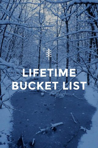 LIFETIME BUCKET LIST