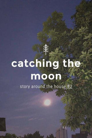 catching the moon story around the house #2