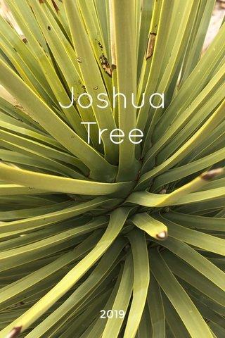 Joshua Tree 2019