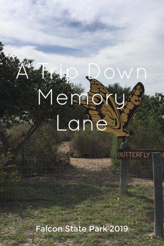 A Trip Down Memory Lane Falcon State Park 2019