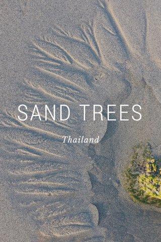 SAND TREES Thailand