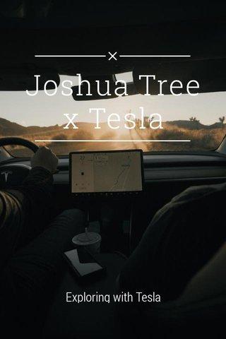 Joshua Tree x Tesla Exploring with Tesla