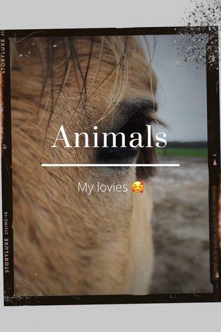 Animals My lovies 🥰