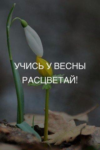 УЧИСЬ У ВЕСНЫ РАСЦВЕТАЙ!
