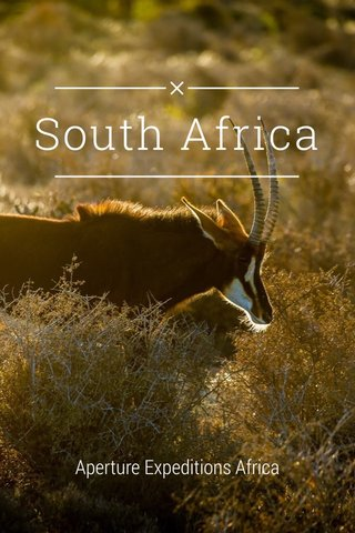 South Africa Aperture Expeditions Africa