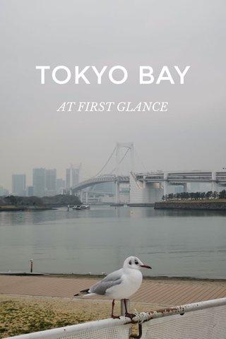 TOKYO BAY AT FIRST GLANCE